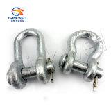 Drope a modifié la jumelle à chaînes type boulon galvanisée (G2150)
