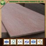 A melhor classe do preço uma madeira compensada comercial para o assoalho