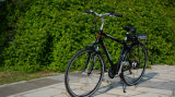 ヨーロッパ人のための250W 36V Cool Man Electric Bicycle