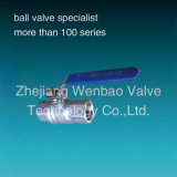 Edelstahl Ball Valve 2PC Threaded Female Ende Ball Valve CF8m 1000wog