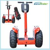 Ecorider 2 바퀴 2 72V Samsung 리튬 건전지를 가진 전기 골프 카트 전기 스쿠터
