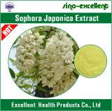 純粋なSophoraのJaponicaのエキスのルチン