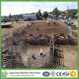 Используемые панели загородки Stockyard скотин/поголовь (5 рельсов, 6 рельсов, 7 рельсов)