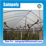 Estufa poli do túnel da alta qualidade para a uva