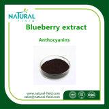 Blaubeere-Auszug-Puder des Gesundheitspflege-Produkt-Blaubeere-Auszug-Anthocyanidins10%-25% durch HPLC