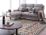 Живущий мебель установленное S6070 комнаты