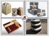 Matt/contenitori lucidi di casella/imballaggio di promozione del documento della laminazione
