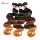 Cheveux humains malaisiens de Remy de couleur de son du cheveu trois d'Ombre