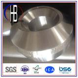 Ajustage de précision modifié de soudure de la sortie Bw/Socket de branchement d'acier inoxydable