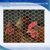 鶏を育てるための六角形ワイヤー網
