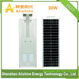 30W 60W 옥외 램프 태양 강화된 한세트 통합 LED 벽 또는 정원 또는 야드 또는 가로등