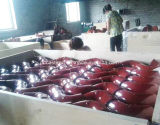 Garnitures de pipe malléables du fer En545/ISO2531 pour l'approvisionnement en eau