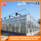 Invernadero del vidrio Tempered del jardín del Multi-Palmo de la agricultura