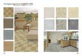 material de construção vitrificado 600X600mm da telha de assoalho da porcelana