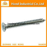 Fastenrs cabeza avellanada Tapping Screw