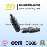 機械化を用いる高いQualilty OEM Ss304の鍛造材