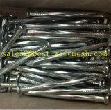 Clous Twisted/spiralés galvanisés de béton en acier de partie lisse