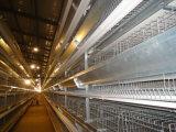 La alta calidad Hightop de la avicultura de la jaula del pollo acoda la jaula para las ponedoras
