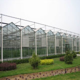 야채와 정원을%s 다중 경간 강철 구조물 온실