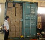 Agente internacional de la compra de componentes del promotor del envío de la cooperación del asunto del transporte