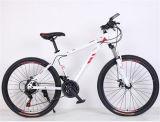 Neues Fahrrad des Berg2017 für erwachsenes Fahrrad