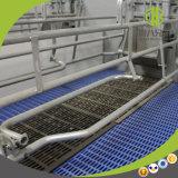 Plastic Bevloering Met latjes voor de Zuivelfabriek & het Gevogelte van de Schapen van /Pig/ van de Geit