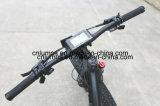 電気自転車250W