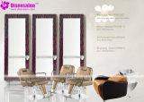 شعبيّة [هيغقوليتي] صالون مرآة [بربر شير] صالون كرسي تثبيت ([ب2022ف])