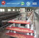 Nuevas jaulas de batería de la capa del huevo de la maquinaria de granja con los alimentadores