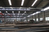 Almacén/taller de la estructura de acero/vertido con la grúa