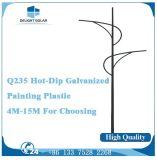 10m 8각형 폴란드 Q235 강철 두 배 램프 LED 거리 옥외 빛