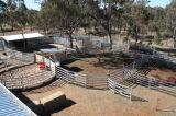 Yarda galvanizada acero del ganado de Australia