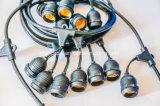 ' brin léger linéaire commercial de la chaîne de caractères 48 - lumière de décoration