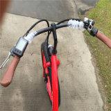 Schnee-elektrisches Fahrrad der Cer-Zustimmungs-750W