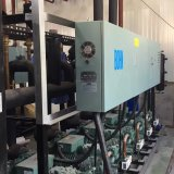 100ton/200ton/500tonの商業/産業冷蔵室およびフリーザー
