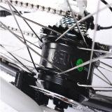 [700كّ] يخفى بطّاريّة [متب] درّاجة كهربائيّة [رسب-304]