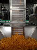 高品質のTailandのためのミネラル/Pure水処理機械