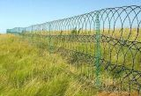 Preiswerter Qualitäts-Zaun-preiswerter Bereich-Bull-Draht-Zaun