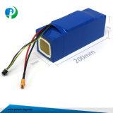 12V recargable de alta calidad de la batería de iones de litio para E-Scooter