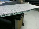 Garantia de 15 anos Painéis de favo de mel de alumínio Revestimento de parede