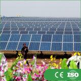 1kw del sistema eléctrico solar de la red para la aplicación casera