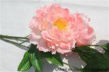 Commercio all'ingrosso artificiale del fiore del Peony delle teste dirette dell'inclusione 5 della fabbrica