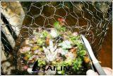Cerca sextavada do engranzamento de fio de Sailin