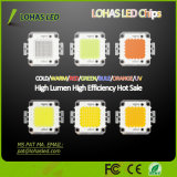 Iluminação LED 12-36V High Power 10W-100W SMD COB LED Chip