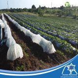농업 덮개를 위한 강화된 가장자리 PP Spunbond 짠것이 아닌 직물