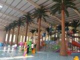 Palmeira ao ar livre do coco do uso da decoração artificial do hotel da palmeira