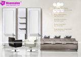 De populaire Stoel Van uitstekende kwaliteit van de Salon van de Kapper van de Spiegel van het Meubilair van de Salon (P2002E)