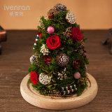 Caja 100% natural real de la flor de Rose real para el regalo de la Navidad