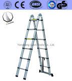 Cantidad Asegurada Escalera Telescópica de 6 Pasos