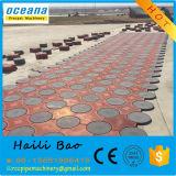 Прессформа верхнего качества пластичная для фабрики Шанхай Китая Paver